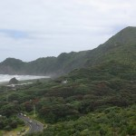 North Piha from Kingstons