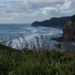 The sweep of Piha beach from the hills to the south