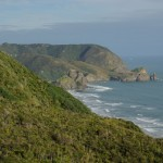Piha from Rose Track