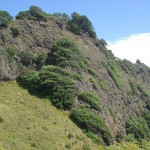 Volcanic past of Piha