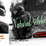 Ivar Treskon – Natural Selection, West Coast Gallery