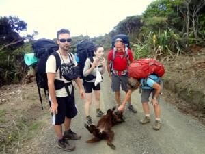 hillary Trail 1 (2)