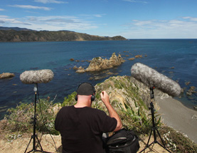Tim Prebble recording bird song
