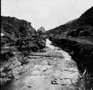 Piha Stream below Mill about 1917