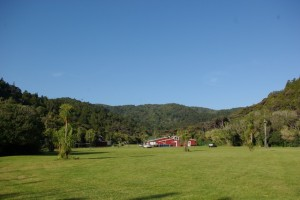 Piha Mill Camp