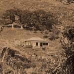 Piha's built heritage