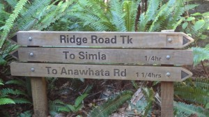 ridge road sign