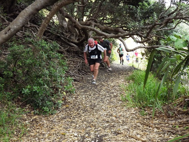 Runners duck under a low pohutukawa branch at start of Marawhara Walk