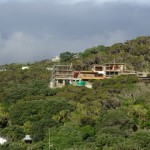 Landscape at Piha