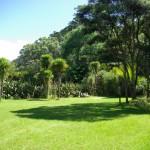 Camping on regional parks around Piha