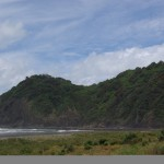 North Piha beach or Waitetura