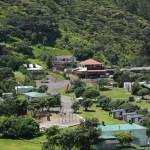 Piha's heart – the village