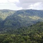 Waitakere Ranges Heritage Area Programme