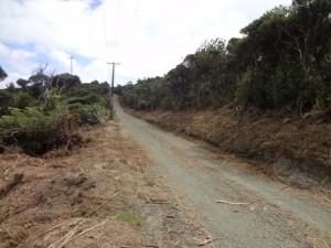 log race road