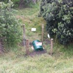 Rabbit bait stations at North Piha
