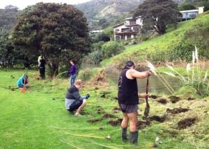 Planting 15 May 15 3 - small