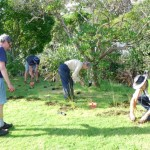 20 attend second Domain planting